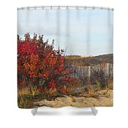 Autumn In The Dunes Shower Curtain