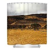 Autumn In The High Desert Shower Curtain