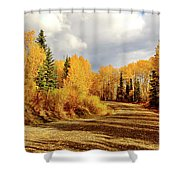 Autumn In The North Shower Curtain