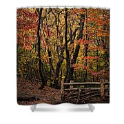 Autumn In The Rambles Shower Curtain