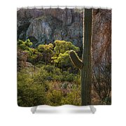Autumn In The Sonoran  Shower Curtain