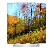Autumn In The Tennessee Hills Shower Curtain