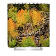 Autumn In The Uinta Mountains Shower Curtain