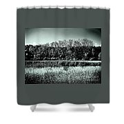 Autumn In The Wetlands - Black And White Shower Curtain