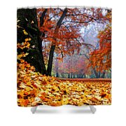 Autumn In The Woodland Shower Curtain