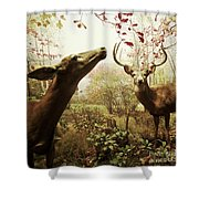 Autumn In The Woods Shower Curtain