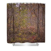 autumn In The Woos Shower Curtain
