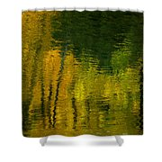 Autumn In Truckee Shower Curtain by Donna Blackhall