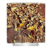 Autumn Is On The Way Shower Curtain