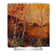 Autumn Landscape 45 Shower Curtain