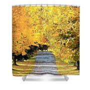 Autumn Lane Shower Curtain