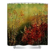 Autumn Lanfscape Shower Curtain