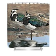 Autumn Lapwings Shower Curtain