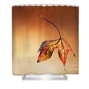 Autumn Leaf Fallen Shower Curtain