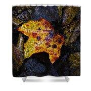 Autumn Leaf On Ground Shower Curtain