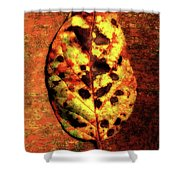 Autumn Leaf One Shower Curtain