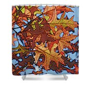 Autumn Leaves 17 - Variation  2 Shower Curtain