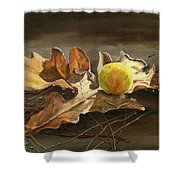 Autumn Leaves 2 Shower Curtain