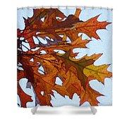 Autumn Leaves 21 Shower Curtain
