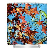 Autumn Leaves 4 Shower Curtain
