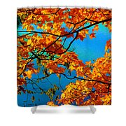 Autumn Leaves 7 Shower Curtain
