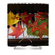Autumn Leaves - A Love Song Shower Curtain