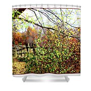 Autumn Leaves Against A Fence Shower Curtain