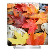Autumn Leaves Art Print Coastal Fossil Rocks Baslee Troutman Shower Curtain