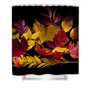 Autumn Leaves Shower Curtain by Barry C Donovan
