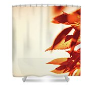 Autumn Leaves Border Shower Curtain