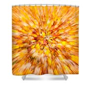 Autumn Leaves I Shower Curtain