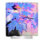 Autumn Leaves In Blue Shower Curtain