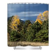 Autumn Leaves In Hart Prairie Shower Curtain