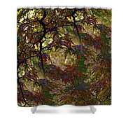 Autumn Leaves In Kyoto Shower Curtain
