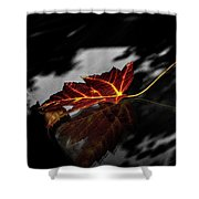 Autumn Leaves... Shower Curtain