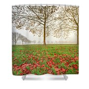 Autumn Leaves Near To Far Super High Resolution Shower Curtain