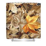 Autumn Leaves Series 2 Shower Curtain