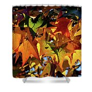 Autumn Leaves2 Shower Curtain