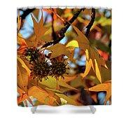 Autumn Leaves4 Shower Curtain