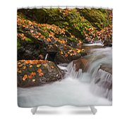 Autumn Litter Shower Curtain