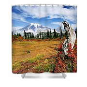 Autumn Majesty Shower Curtain