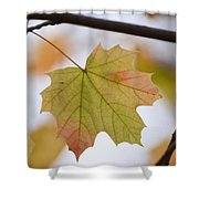 Autumn Maple Leaf Vertical Shower Curtain