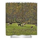 Autumn Meadow Shower Curtain