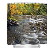 Autumn Meander Shower Curtain by Mike  Dawson