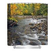 Autumn Meander Shower Curtain