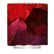 Autumn Moods 8 Shower Curtain