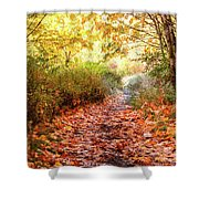 Autumn Morning Shower Curtain