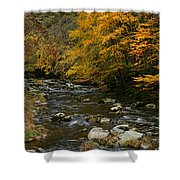 Autumn Mountain Stream Shower Curtain