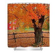 Autumn Near New Germany, Nova Scotia Shower Curtain