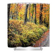 Autumn On Long Pond Road Shower Curtain